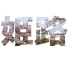 Himeji Kanji Photographic Print
