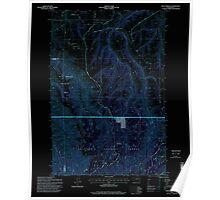 USGS Topo Map Washington State WA Rose Springs 243520 1995 24000 Inverted Poster
