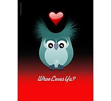 OWL LOVE Photographic Print