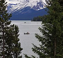 Maligne Lake iPhone Case by Vickie Emms