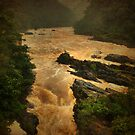 Barron Gorge in the Wet Season by Aaron Davis