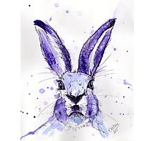 Lucian Hare Photographic Print