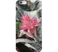 Bromelaid Flower iPhone Case/Skin