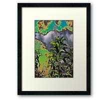 Lusidia Framed Print