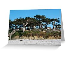 Kite-eating tree and white sand, Carmel Greeting Card