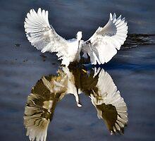 Like An Angel by Saija  Lehtonen