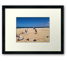 Chasing Gulls Framed Print