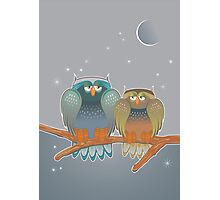 two owls Photographic Print