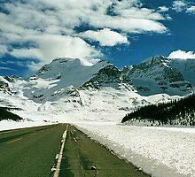 Icefields Parkway, Jasper National Park, Alberta, Canada by Adrian Paul