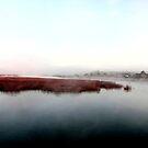 a misty walk into Totton -  by DARREL NEAVES