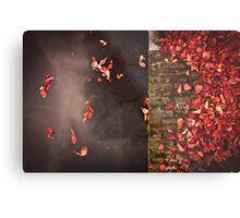Red leaves and water Metal Print