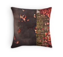 Red leaves and water Throw Pillow