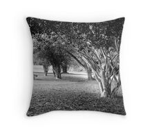 Picnic Bench in the Visitor Centre, Phoenix Park in Dublin Throw Pillow