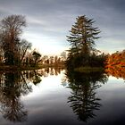 Rye Water lake by Nicola Lee