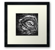 let me sleep Framed Print