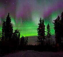 November Auroras by peaceofthenorth