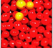 Tomatos by MarkusWill