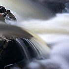 Mason Falls Park - 2011 by Joseph Rotindo