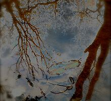 Reflections by Johnathan Bellamy