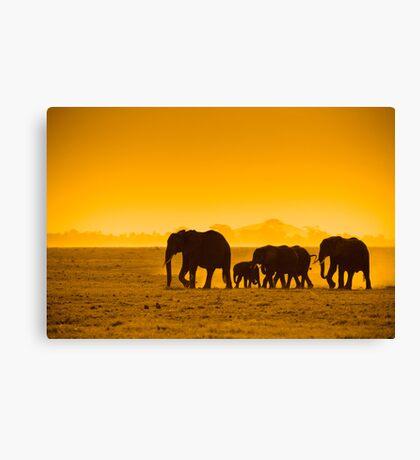 Silhouettes of elephants Canvas Print