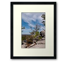 Stone Mountain Park Framed Print