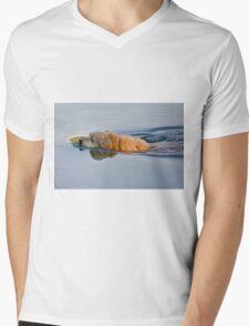 The Neverending Story Mens V-Neck T-Shirt