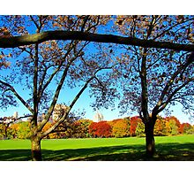 Autumn view, New York City Photographic Print