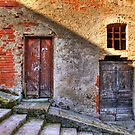Dual Dilapidated Doors by Bruce Taylor