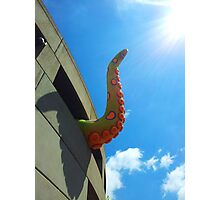 Tentacle at Hamer Hall, Melbourne Photographic Print
