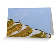 Rice terraces of Yuanyang,  Yunnan, China Greeting Card