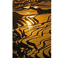 Rice terraces of Yuanyang,  Yunnan, China Photographic Print
