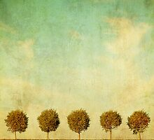 Grunge image of 5 trees by javarman