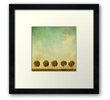 Grunge image of 5 trees Framed Print