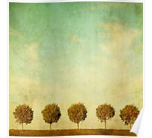 Grunge image of 5 trees Poster
