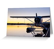 Sunset and a Beaver Greeting Card