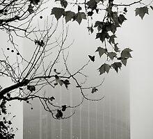 Foggy Paris by Laurent Hunziker