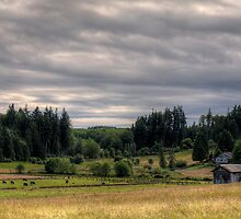 Farm in the Field by Mari  Wirta