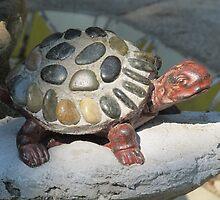 Mosaic turtle - Tortuga con mosáico, Puerto Vallarta, Mexico by PtoVallartaMex