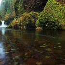 Punchbowl Falls I by Tula Top