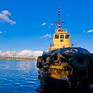 Halifax Tug by Cameron  Allen Lamond