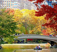 Autumn fun in Central Park, New York City  by Alberto  DeJesus