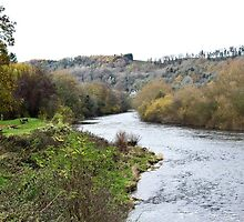The River Wye at Lower Lydbrook by missmoneypenny