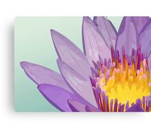 Flower of lotus Canvas Print