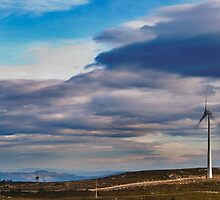 Renewable Energy by César Torres
