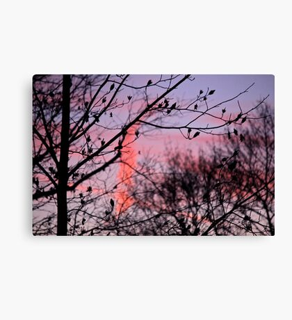 Bye to the Day Canvas Print