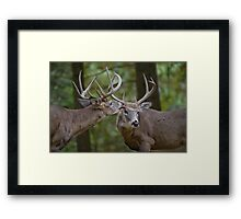 A friend in need... Framed Print