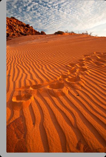 Footprints in the Sand by Mieke Boynton