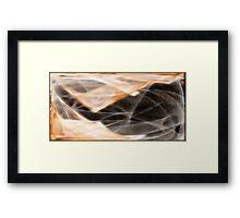 Membrane Framed Print
