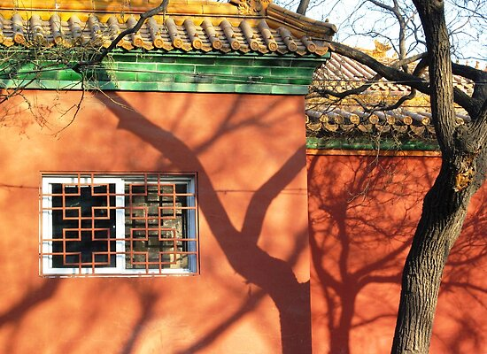 Window and Shadows © by Ethna Gillespie