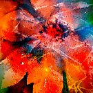 Christmas...Poinsettia Abstract... by  Janis Zroback